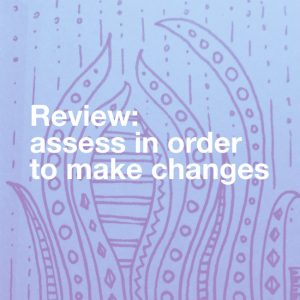 review - assess in order to make changes